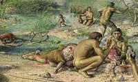 Зүүн хойд Хятадаас эртний хүний яс олжээ
