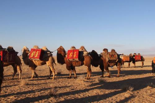 """""""Миний цуглуулсан хорвоо"""" тэмээн жингээр ном хүргэх төслийн эхний цуваа хөдөллөө"""