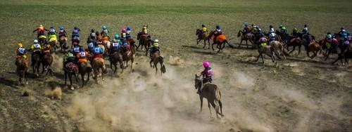 Иргэд, уяач нар хурдан морь унаач хүүхдээ ямар үнэлгээгээр даатгуулахаа тохиролцон тогтоох эрхтэй