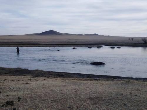 Хэрлэн голоос 500 орчим малын сэг зэмийг зайлуулж цэвэрлэв