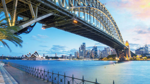 Сиднейг зорих хүнд чухам үнэнийг...