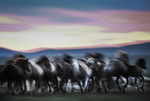 """Mongolia Today-2019"": Түүхт Халхгол сум"