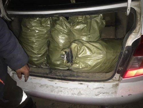Улаанбаатар хот руу түүхий нүүрс оруулахыг хориглоно